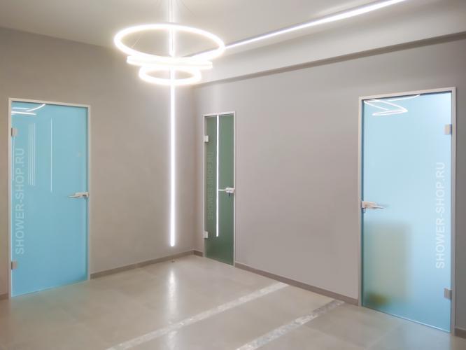 Распашная стеклянная дверь с коробкой
